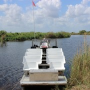 Great Blue airboat